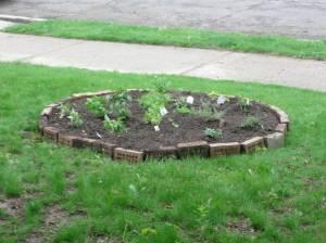 Front yard herb garden