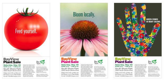 plant sale combo