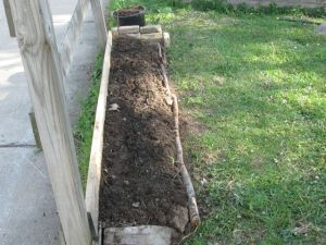 A new garden bed built next to the fence along the back alley behind our house.